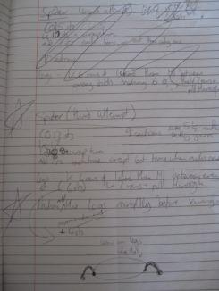 Does anyone read hiroglyphics?